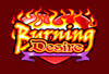burn desire pokie